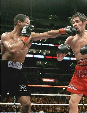 Mosley smashes Margarito: HoganPhotos.com