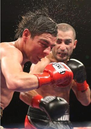 Darchinyan hammers Arce: Tom Casino/Showtime