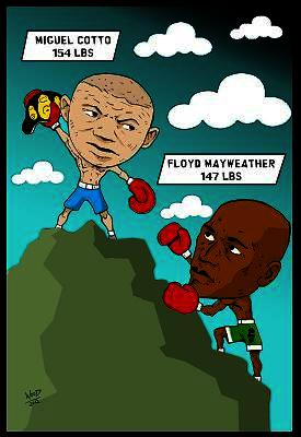 Mayweather Jr Vs Cotto cartoon copyright Alex Luces