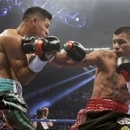 Mares stops Ponce De Leon in 9th round (The Associ