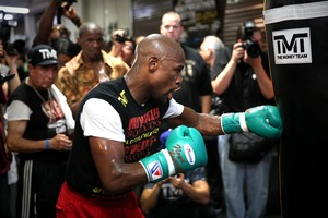 Mayweather Works out (pics StephanieTrapp)